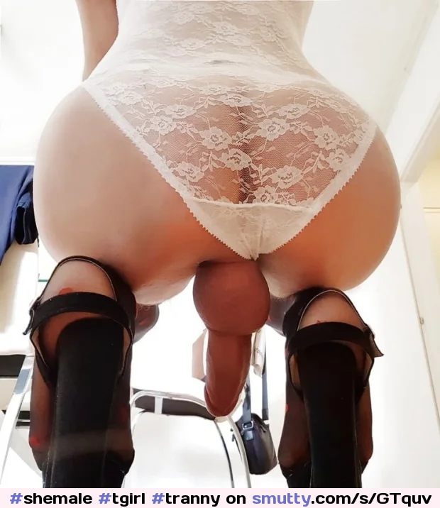 step brother and not step sister fuck porn xhamster Paulinavergara  TS Shemale Tgirl Tranny Transexual Trap Cock Shemalebigcock Shemalelingerie